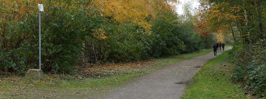 Van Eupen Forest